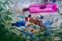 终结塑料污染:贵在行动!
