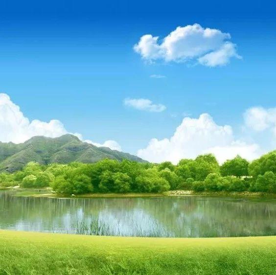 环境时评 池塘虽小,保护不能少