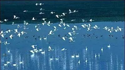 生态环境部和中国科学院联合发布中国