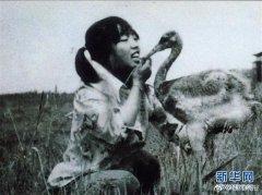27年前,女孩为救丹顶鹤牺牲;27年后,她弟弟同样因公殉职