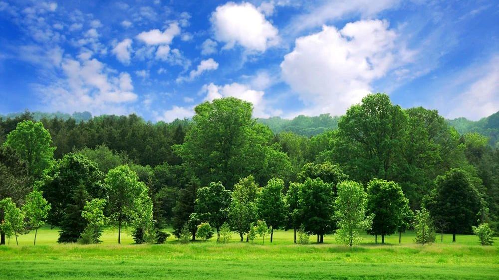 生态环境部发布2018年5月和1-5月重点区域和74个城市空