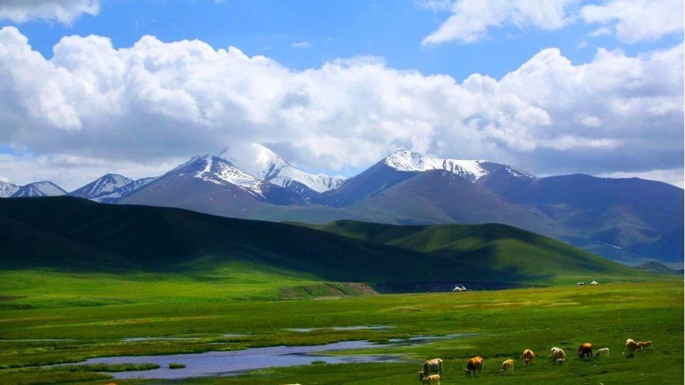 落实最严格的耕地保护制度 陕西省坚决