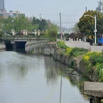 嘉兴市嘉善县三项举措不断创新生态环境