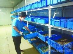 银川市将餐厨垃圾做成绿色产业