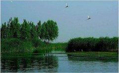 天津形成三区一代多点生态环保新格局