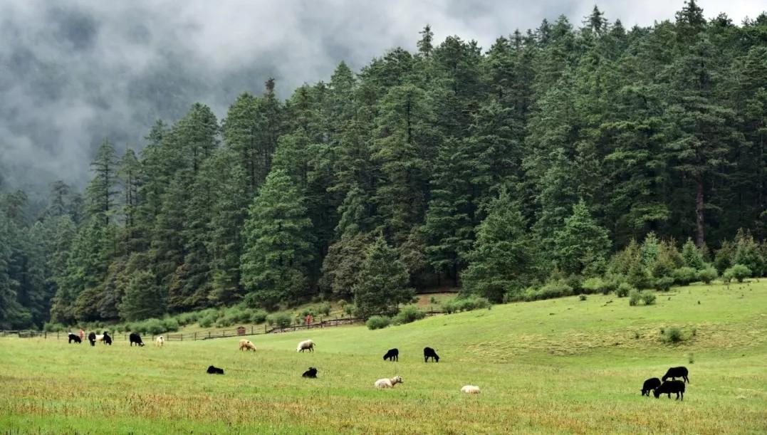 青藏高原为什么重要?为什么湖泊增多