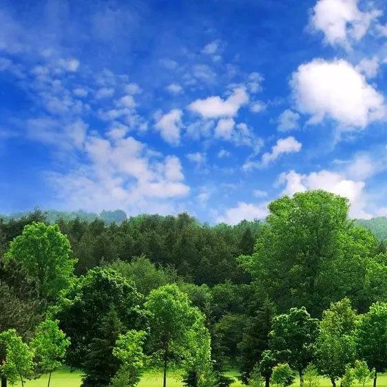 张家口市对六大生态环保重点领域进行