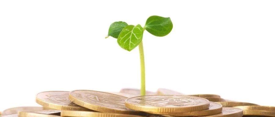 马骏:降低绿色资产风险权重