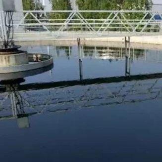 污水处理技术之活性污泥生物相观察的经验总结