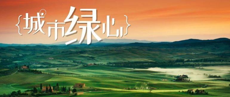 湖南省副省长陈文浩在株调研:实现绿心生态增值、发展
