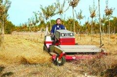 北京平原生态林推广机械化养护