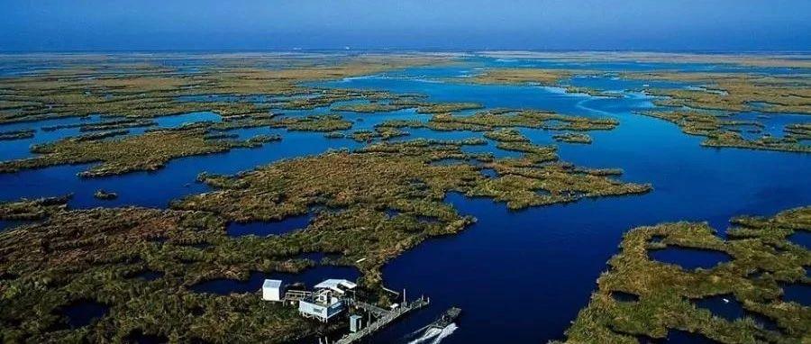 """湿地之美和湿地之好,岂止""""湿""""情画意"""