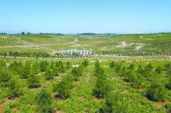 绿色变奏 北京森林覆盖率达到43%,城