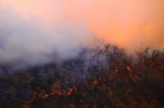 加州野火酿破表空污 脏到尝得到空气沉
