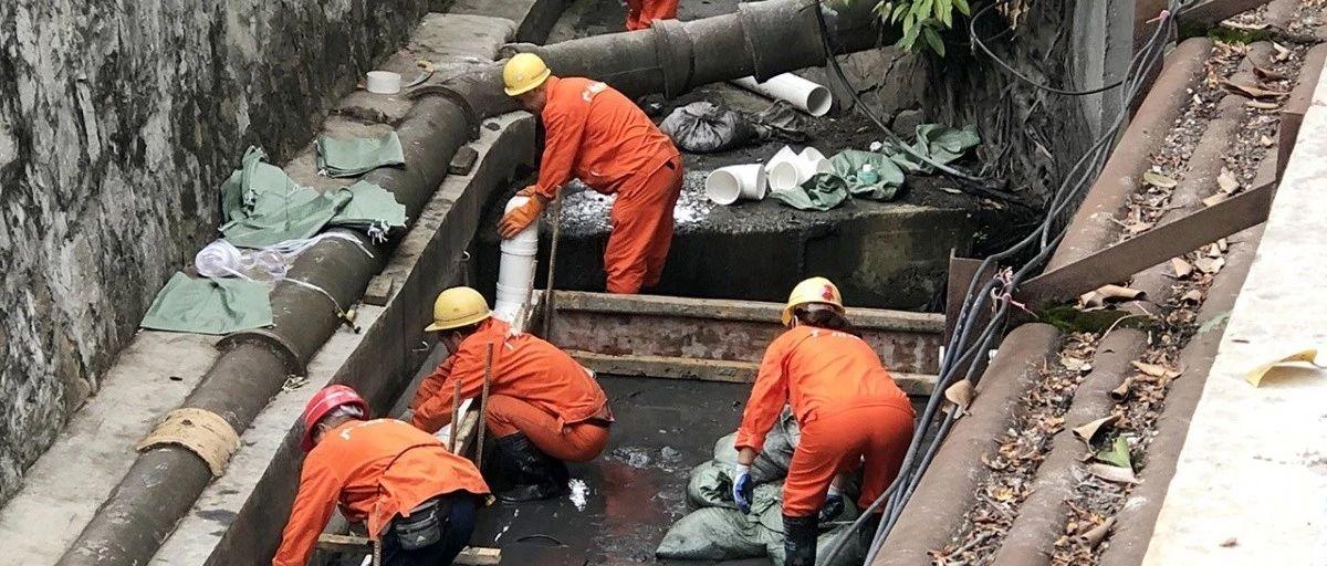 广州清污分流见成效,黑臭景泰涌成清水渠