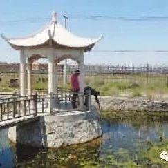 伊通河流域水污染综合治理技术及工程示范研究课题成果