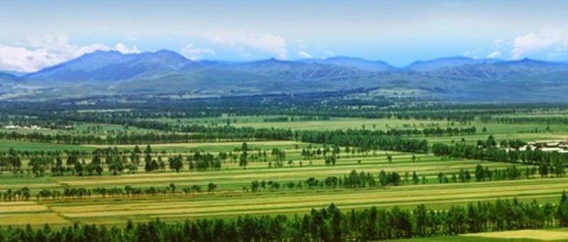 改革开放40年 林业和草原建设回顾与展望