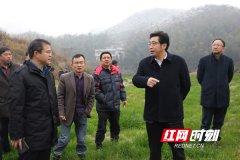 衡阳大力整改大义山省级自然保护区 严