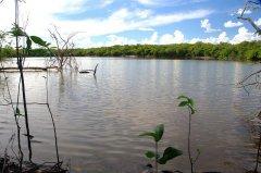 罕见!95%流域保持完好 哥伦比亚比塔