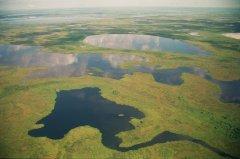 """最大热带湿地""""潘塔纳尔"""" 环团促成南美三国共同保护"""