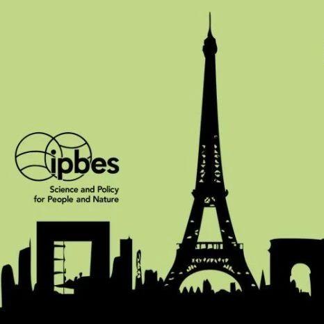 绿会获邀对IPBES的下阶段工作计划 (草
