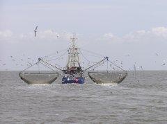 中央支持广西海洋生态修复资金3.72亿元 主