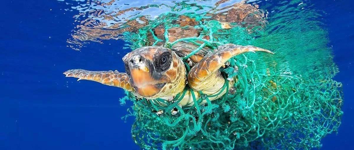 海洋废弃渔网的归宿――造粒or拉丝?