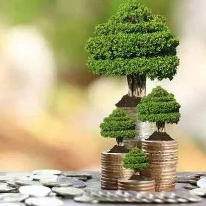 推动绿色金融更好发展 湖州一批新组建