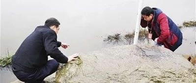 萍乡市中心城区有支环保巡查队