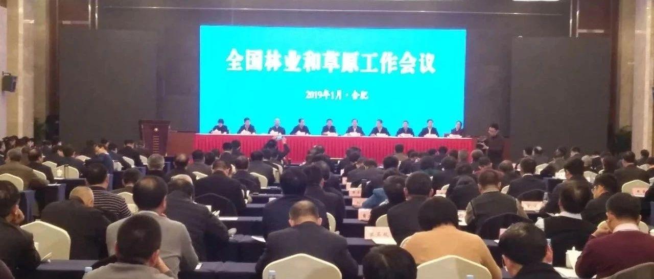 2019年全国林业草原工作会议:推动林