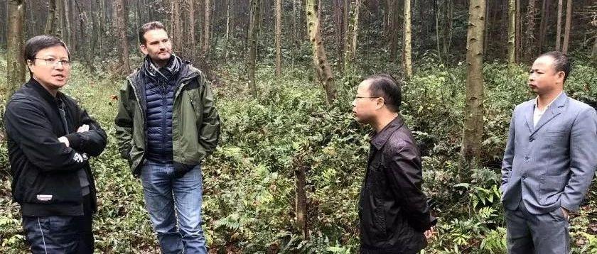 千烟洲模式――中国大规模景观恢复的