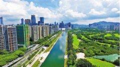 水环境持续改善 深圳变得更美