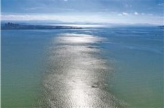 《滇池蓝藻处理站藻泥含氮、磷的计量