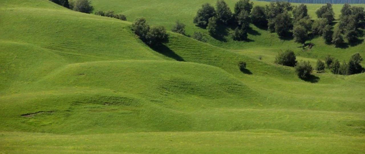 提升草原科技支撑如何发力?草原专家列出超详细清单