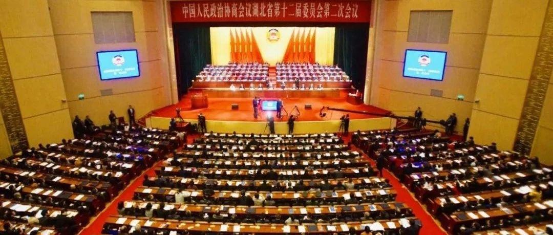 湖北政协委员两会建言:亟待加强对非