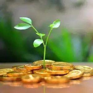 广州出台多项绿色金融支持政策
