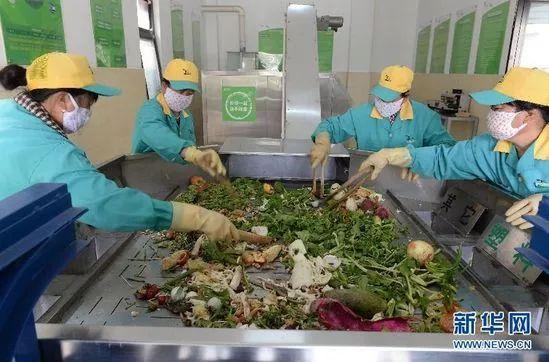 餐厨垃圾回收别成垄断生意