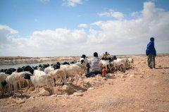 联合国副秘书长强调气候变化因素与冲