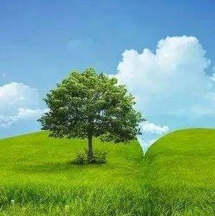 """马骏在达沃斯谈""""一带一路""""绿色投资原则"""