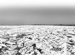 今冬沿岸海冰调查首用测绘无人机