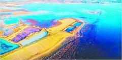 武汉安山湿地公园正式成为国家级 全省