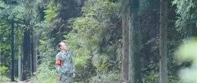江西省遂川县五指峰林场祖孙三代的护绿