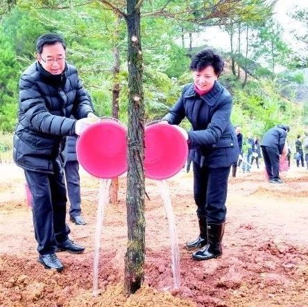 2019年贵州省义务植树活动举行