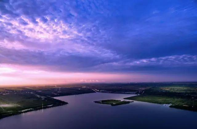 水生植被群落得以重建 枝江金湖国家湿