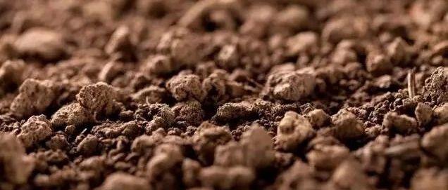 土壤重金属污染 你我身边的化学定时炸弹