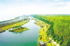新疆加快推进林长制改革