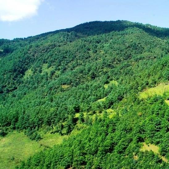 江西省第四生态环境保护督察组向鹰潭