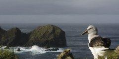 全新亮相的智利海洋公园