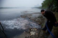 中国环境公益诉讼的新力量
