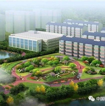 2020年江苏省生态环境状况公报发布 PM2.5浓度南京市优